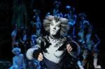 Cats musical milano_arcimboldi