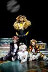 Cats musical milano_arcimboldi_2