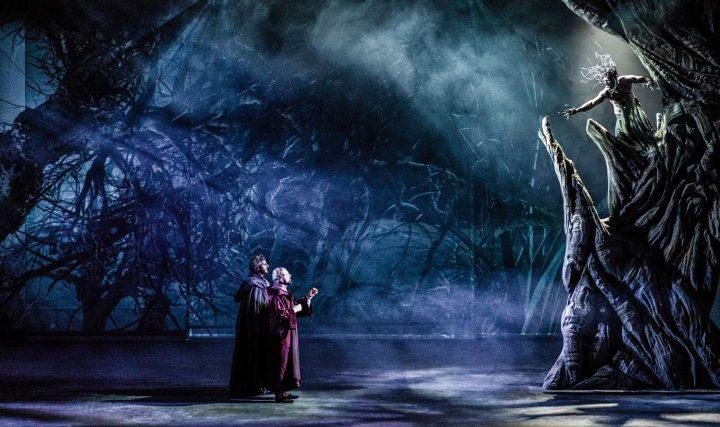 La Divina Commedia Opera Musical tour 2019-pier_delle_vigne